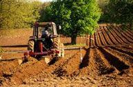 Noul Cod Fiscal, cu aplicabilitate in sectorul agricol