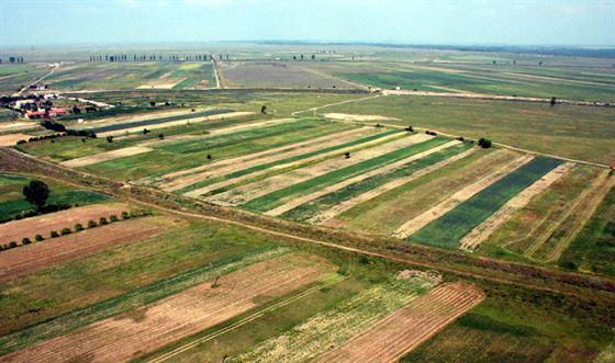 Cum a evoluat pretul terenurilor agricole in prima jumatate a anului