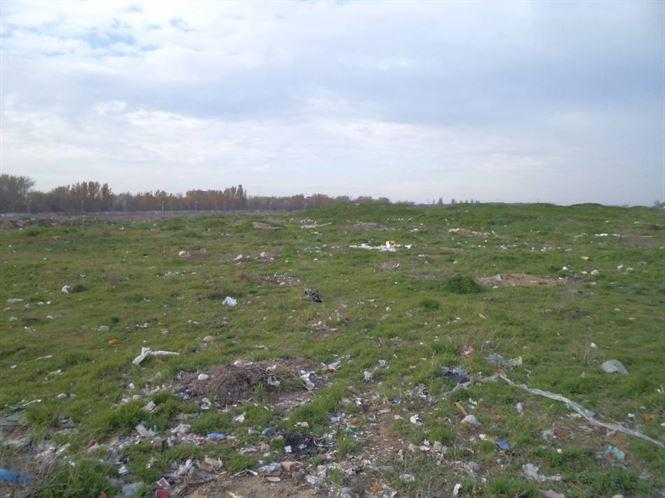 Actiune de ecologizare in zona ANL Lacu Dulce