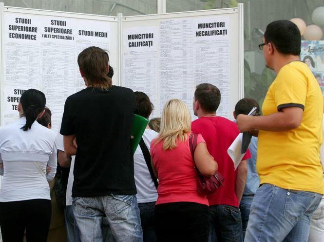 Angajatorii primesc subventii pentru absolventii stagiari