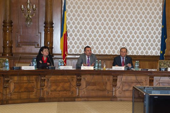 "Reuniunea ""HIV/SIDA in Romania: provocari actuale si prioritati de actiune"""