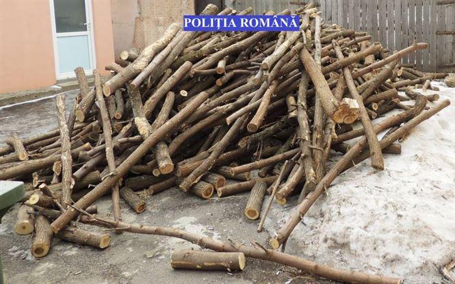 Percheziţii la persoane bănuite de furt de material lemnos