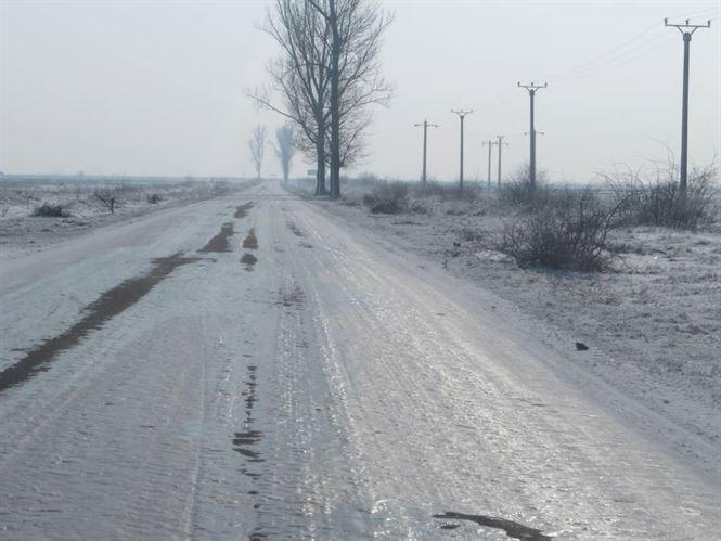 Polei pe drumurile din Braila