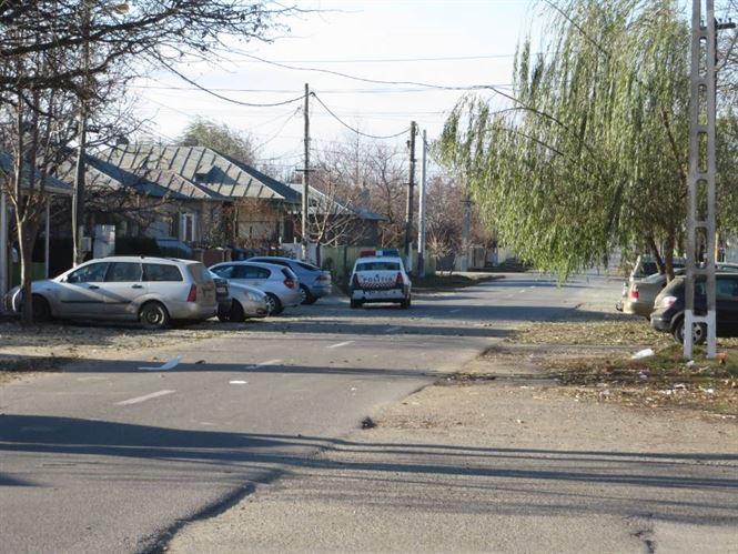 Trei tineri din Insuratei, cercetati pentru furt de lucerna
