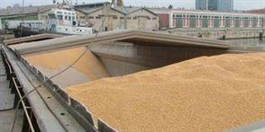 Vezi aici care sunt pretul cerealelor in aceasta saptamana