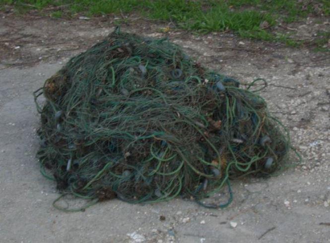 Zece plase de pescuit si peste 30 kg de peste confiscate de jandarmi