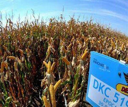 Basescu a semnat ieri un decret prezidential privind cele 2.815 hectare ale statiei de cerectare agricole