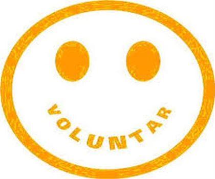 Voluntari europeni pentru Braila