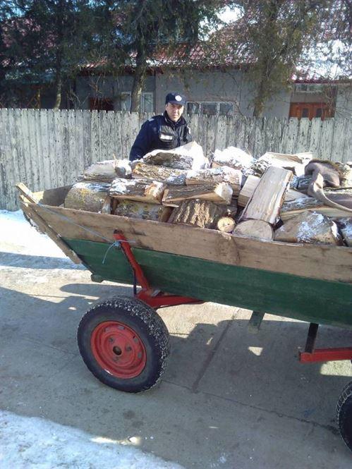 Sustragere de material lemnos in zona Jirlau