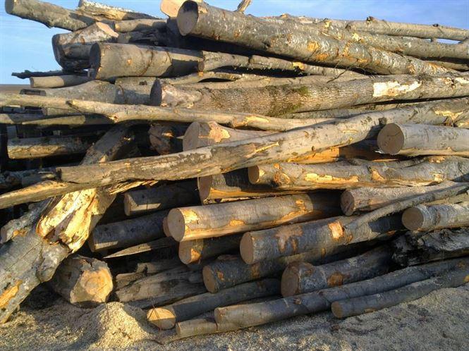 lemne-de-foc-1
