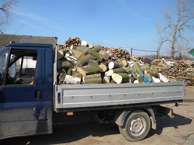 VAnzator de lemne de foc amendat cu 2 mii de lei