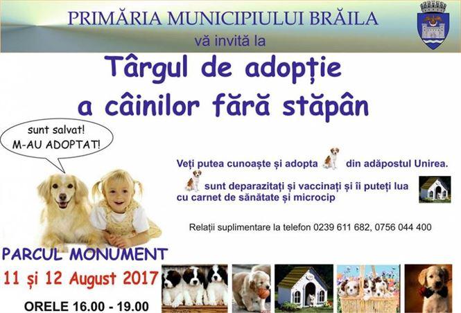 Targ de adoptii pentru cainii fara stapan